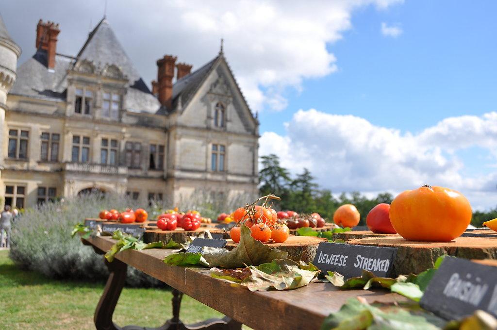 Chateau-de-la-Bourdaisiere-Montlouis-sur-Loire-3.JPG