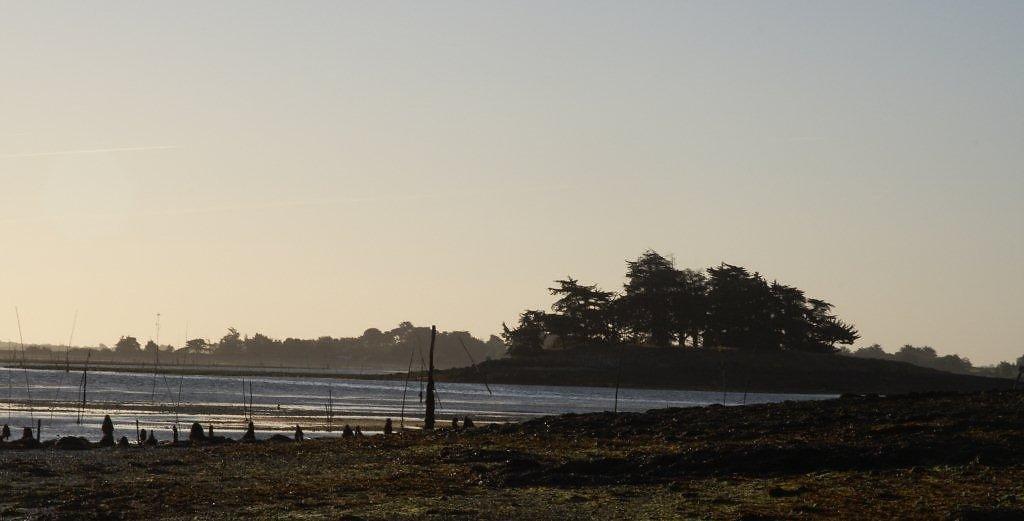 golfe-Morbihan-14.jpg